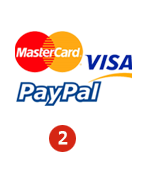 Pay the visa fee online